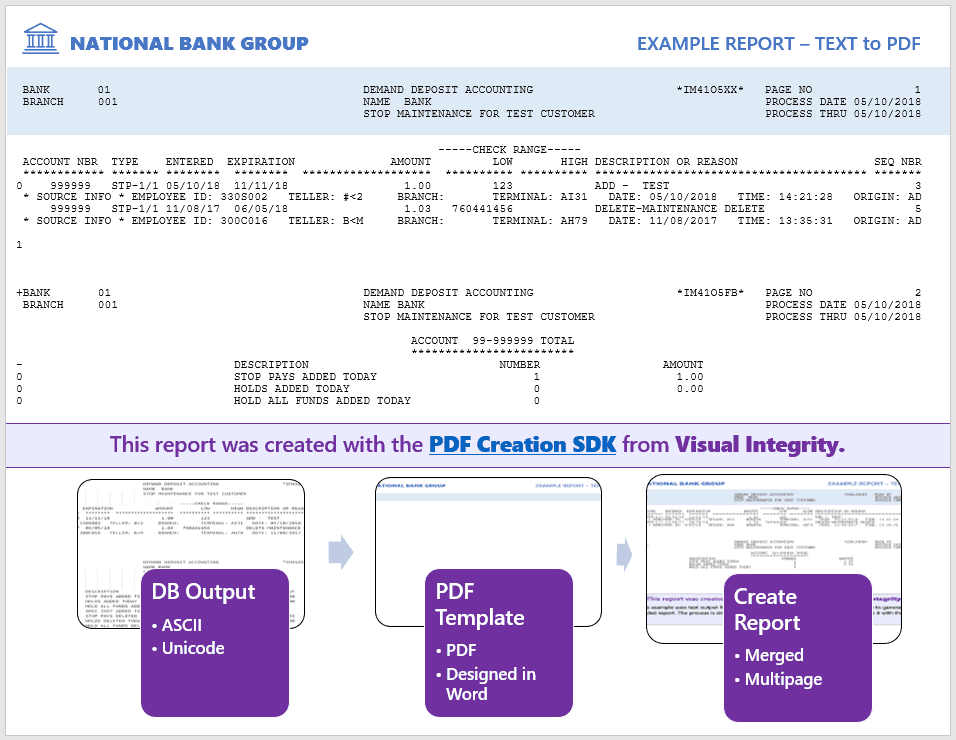 example of PDF Creation SDK merging transaction data with a PDF template for a branded report